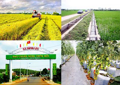 Phát động cuộc thi báo chí về phát triển nông nghiệp, nông thôn bền vững dành cho các nhà báo ASEAN - ảnh 1