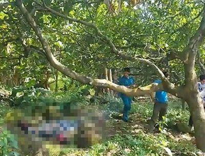 Người đàn ông tử vong bí ẩn trong vườn điều ở Đồng Nai - ảnh 1