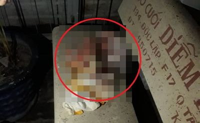 Nghe thấy tiếng khóc thét, kiểm tra phát hiện bé sơ sinh kháu khỉnh đặt trên ghế đá trong hẻm tối - ảnh 1