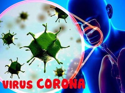 Tăng sức đề kháng bằng Cốm Subạc: Giải pháp vàng giúp phòng lây nhiễm Virus Corona  - ảnh 1
