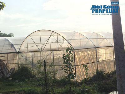 """Giá đất xung quanh """"trang trại 300 tỷ"""" của sư thầy Thích Thanh Toàn có đắt không? - ảnh 1"""