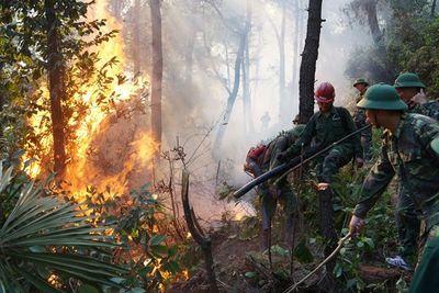 Vụ cháy rừng ở núi Hồng Lĩnh: Lửa bất ngờ đổi chiều, tiến sát khu dân cư - ảnh 1
