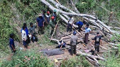 Bình Định: Vào rừng chặt cây, nam thanh niên bị gỗ đè tử vong - ảnh 1