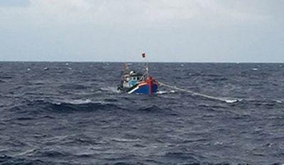 Bình Định: Đánh bắt thủy sản trái phép, 4 chủ tàu cá bị phạt 3,6 tỉ đồng - ảnh 1