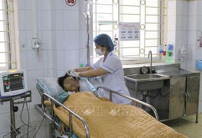 Điện Biên: Ăn nhầm nấm độc, 1 người tử vong, 1 người nguy kịch khó qua khỏi - ảnh 1