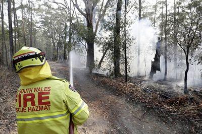 Khói từ thảm họa cháy rừng ở Australia sẽ phát tán đi khắp nơi trên thế giới - ảnh 1