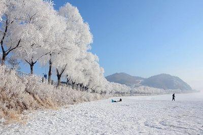 Trung Quốc xuất hiện trở lại ca nhiễm Covid-19 nội địa, gấp rút điều tra nguồn lây nhiễm - ảnh 1