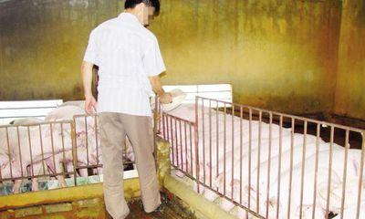 """Kinh ngạc loại """"thuốc"""" vỗ lợn mỗi tháng tăng 30-40kg"""