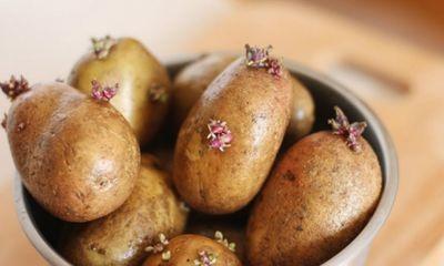 10 món ăn khoái khẩu có thể gây chết người