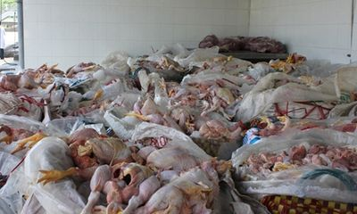 Ma trận thịt gà thối: Tránh cách nào?
