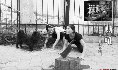 Lặng người trước ảnh của các vũ công hóa thân thành... chó bị bạo hành