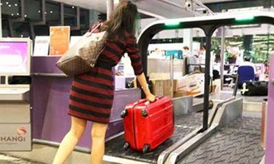 Singapore cấm nhập cảnh khách VN: Không phải giờ mới cấm