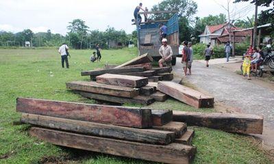 Tài nguyên - Quảng Nam: Trục vớt 47 phách gỗ lậu dưới lòng sông Tranh