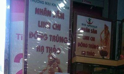 Đại lý nghi của công ty Khánh Tân bán nhân sâm