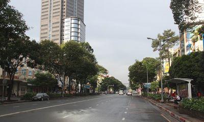 74 cây xanh có thể bị chặt để xây nhà ga metro TPHCM