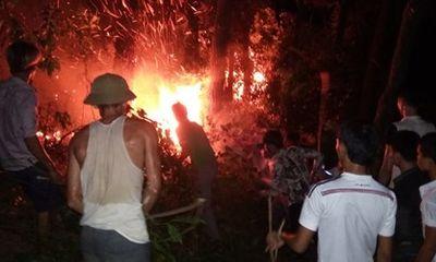 Cháy rừng thông, hàng trăm người dập lửa tại Hà Tĩnh
