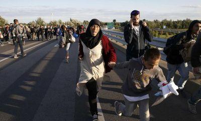 Hàng trăm người di cư ẩu đả với cảnh sát để sang Đức