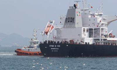 Tàu hàng có trọng tải lớn nhất từ trước tới nay cập cảng Việt Nam