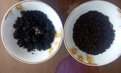 Làm rõ nghi vấn gạo nhựa xuất hiện tại TPHCM