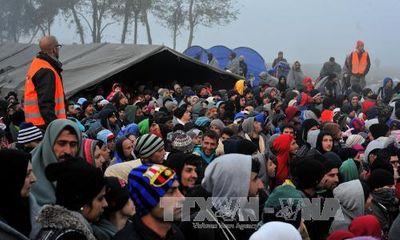 EU và 3 nước Balkan họp khẩn về khủng hoảng di cư