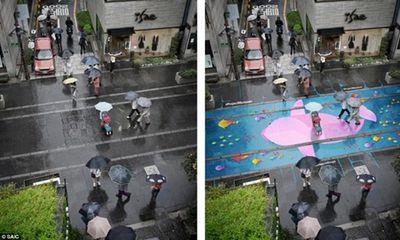 Đường phố Hàn Quốc biến thành tranh vẽ trong mùa mưa
