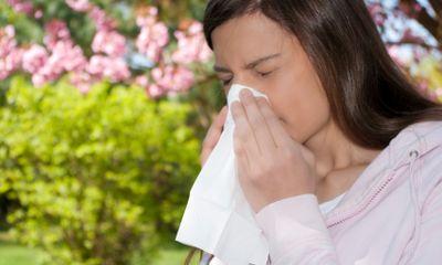 Nguyên nhân, triệu chứng của bệnh viêm mũi dị ứng