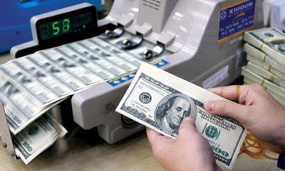 Giá USD/VND hôm nay 25/11 giảm nhẹ