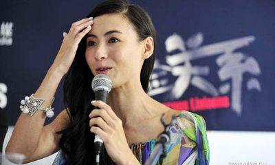 Trương Bá Chi muốn sinh thêm con