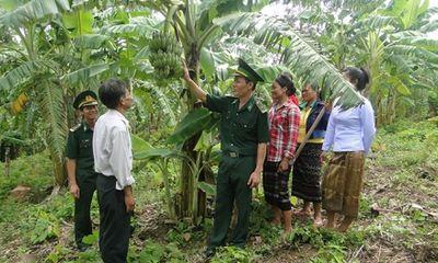 Hoạt động kết nghĩa của nhân dân hai biên giới Việt - Lào