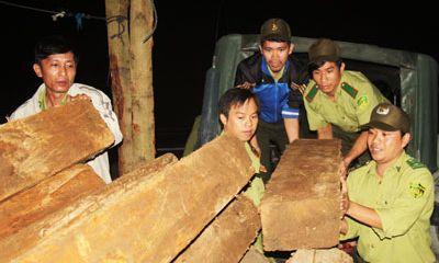 Ngăn chặn nhiều điểm nóng phá rừng tại Khánh Hòa