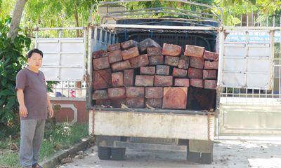Liên tiếp bắt giữ nhiều vụ vận chuyển gỗ sơn huyết trái phép
