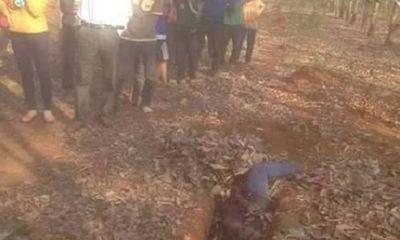 Phát hiện thi thể một phụ nữ trong rừng cao su