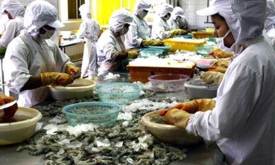 Mỹ công nhận Việt Nam không bán phá giá tôm