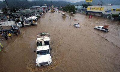 Bão liên tiếp vào Mexico, 20 người chết