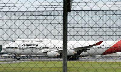 Máy bay không thể cất cánh vì... 1 con rắn