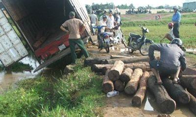 Tẩu tán gỗ, xe tải lật nhào xuống ruộng