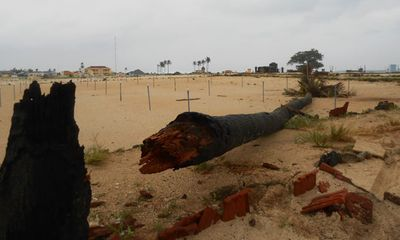 Chưa vào, bão số 11 đã đánh sập cây cối, nhà cửa