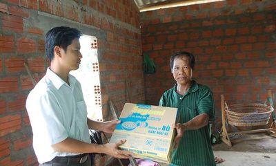 Hàng trăm héc ta cao su ở Thừa Thiên- Huế bị bão Nari quật ngã