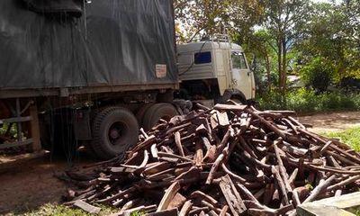 Liên tiếp bắt giữ 2 vụ vận chuyển gỗ lậu