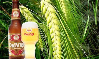 Hạn chế bia giả, bia nhái vì sức khỏe người tiêu dùng
