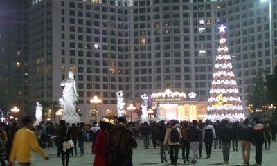 Clip: Cận cảnh cây thông Noel lớn nhất Việt Nam