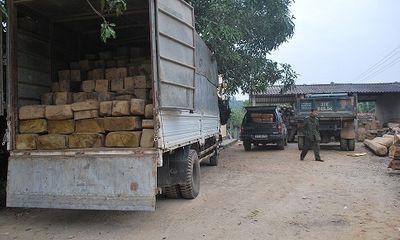 Nghệ An: Ngày cuối năm liên tiếp bắt giữ xe chở gỗ lậu
