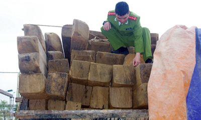 Hà Tĩnh: Bắt một xe ôtô vận chuyển 7m3 gỗ trái phép