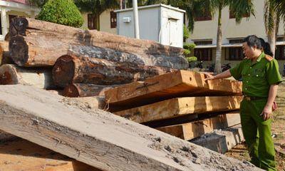 """Gia Lai: Phát hiện hơn 22m3 gỗ """"lậu"""" trong tình trạng """"vô chủ"""""""