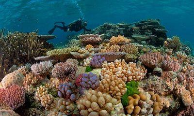 10 kỳ quan thiên nhiên và nhân tạo ở Australia