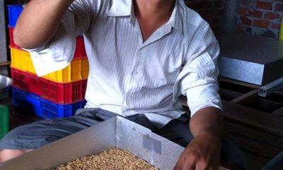 Chàng trai 9X kiếm 20 triệu đồng/tháng nhờ sâu gạo