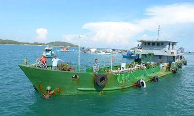 Bắt giữ tàu vận chuyển dầu trái phép trên vùng biển Tây Nam