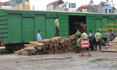 Lộ đường dây vận chuyển gỗ lậu quý hiếm bằng đường sắt
