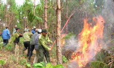 Video: Nóng gây ra 2 vụ cháy rừng liên tiếp ở Nghệ An