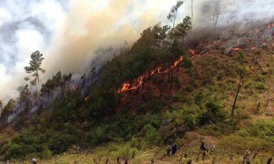 Báo động cháy rừng cấp cực kỳ nguy hiểm tại Miền Trung
